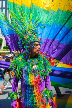 Pride 2013-13